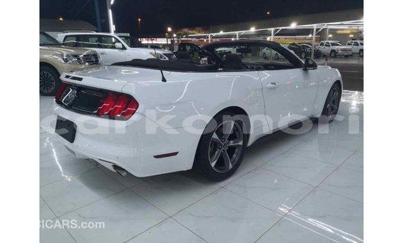 Acheter Importé Voiture Ford Mustang Blanc à Import - Dubai, Grande Comore