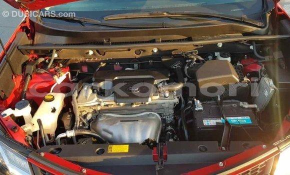 Acheter Importé Voiture Toyota RAV4 Rouge à Import - Dubai, Grande Comore